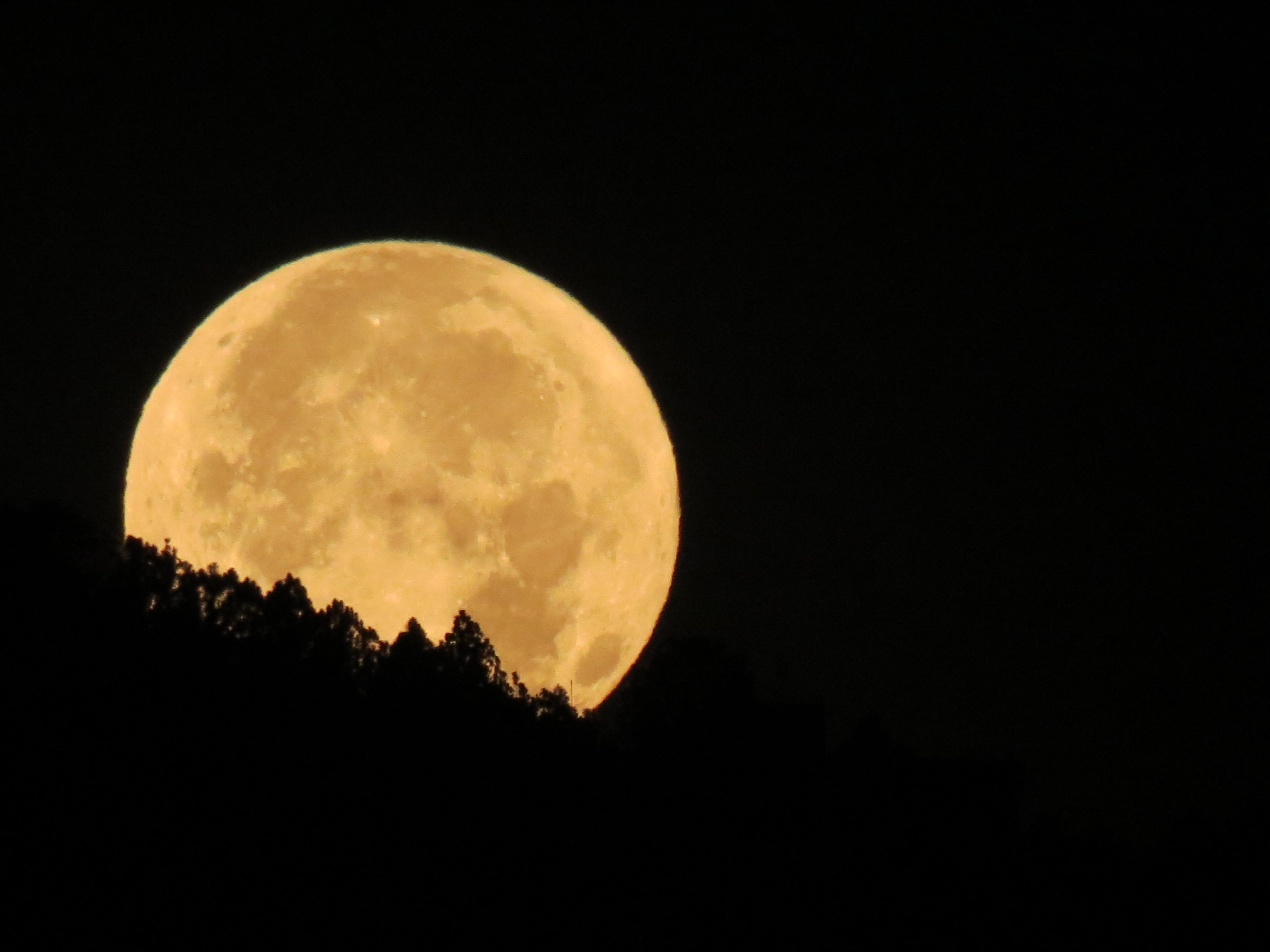 La Luna Y La Naturaleza